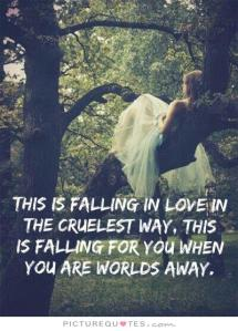 taylor swift quotes about falling in love (20)