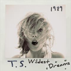 taylor swift lyrics wildest dream quotes (1)