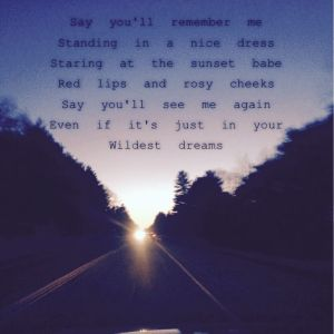 taylor swift lyrics wildest dream quotes (10)