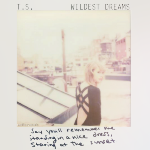 taylor swift lyrics wildest dream quotes (3)