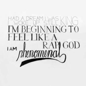 phenomenal eminem quotes lyrics (6)